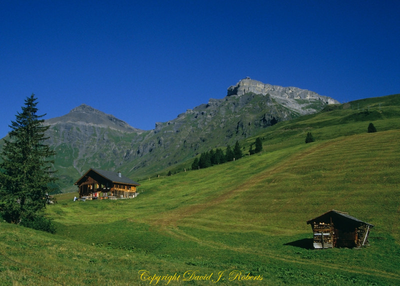 Small sheds and fields above Gimmelwald, Switzerland with the Schilthorn in background