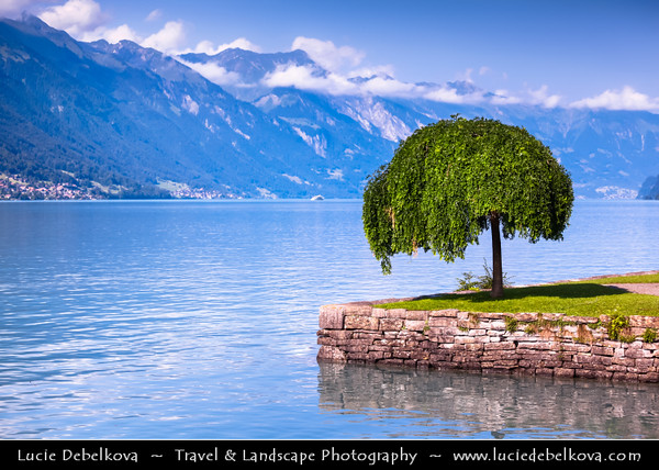 Europe - Switzerland - Swiss - Alps - Alpen - Alpi - Alpes - Great Mountain Range in Europe - Brienz Lake - Interlaken