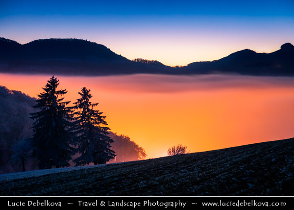 Europe - Switzerland - Swiss - Solothurn Canton - Jura Mountains - Juragebirge - Massif du Jura - Sub-alpine mountain range located north of the Western Alps - Area around Ruins of Frohburg Castle - Hilly frozen winter snowy landscape submerged in sea of fog