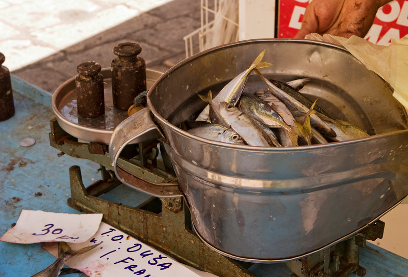 A bucket filled with sardines being weighed on a scale at the fish market in Split, Croatia.