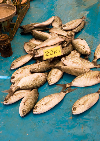 A number of small fish, freshly caught, for sale at 20 kuna per kilo at a fish market in Split, Croatia