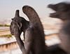 A view of two gargoyles on Paris' Notre Dame Cathedral. Taken with a Lensbaby special effect lens for selective focus on the gargoyle's hands.