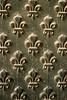 Details from the doors to Napoleon's Tomb in Paris show off a fleur-de-lis pattern that is repeated over the door. The paint is peeling due to weathering.