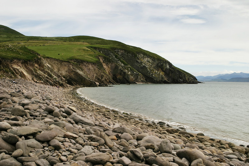 A rocky beach on the Irish coastline near the Dingle Peninsula where the shoreline sweeps around from one corner to the other. The rocks have been rounded with the effects of weathering and the wave action from the water.