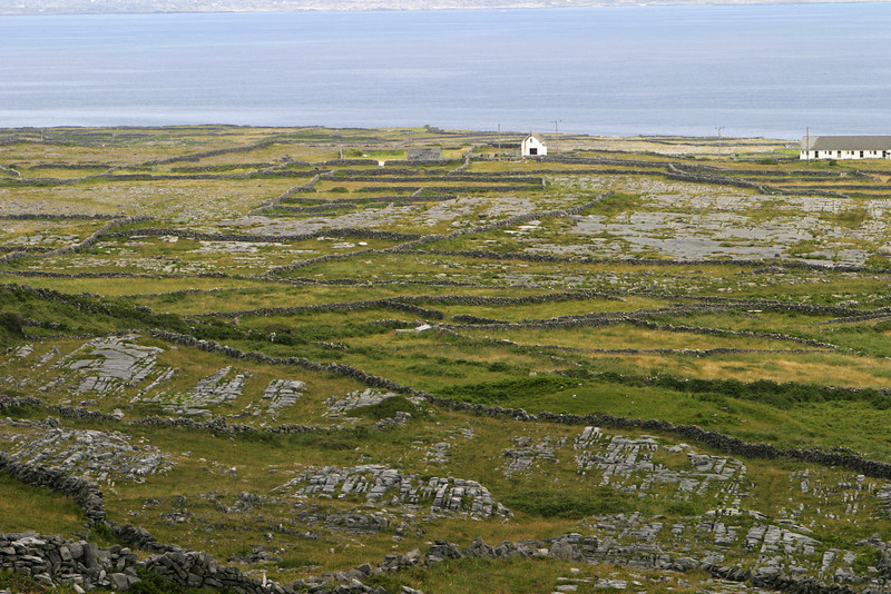 The Irish have built stone walls to separate fields in lieu of fences as well as to clear the fields of rocks for thousands of years. This view shows part of the way that the network of rock walls has covered almost all of the Aran Islands.