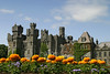 A European castle with a group of flowers in the foreground. This castle is like in a fairy tale with towers and turrets and ivy and more. The stonework is quite intricate.