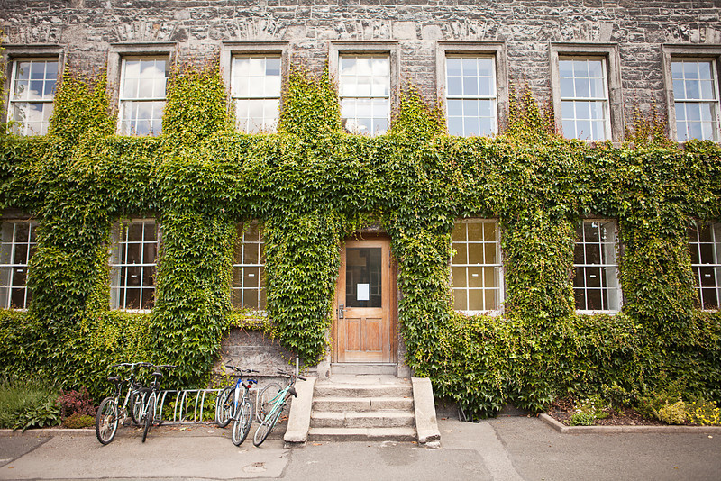 The entrance to a building, covered with ivy, on a college campus. Students' bicycles are parked in a bike rack by the entry steps.