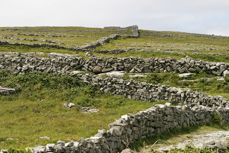 Stone walls in Ireland separate various pastures and fields in rural Ireland in what is a timeless scene. These rock walls are built from rocks pulled from the fields.