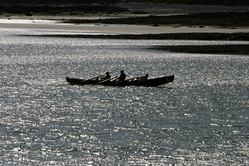 Three young men or boys rowing in a boat race near the Aran Islands in Ireland. They were getting their backs into it in order to win the attention of the local lasses!