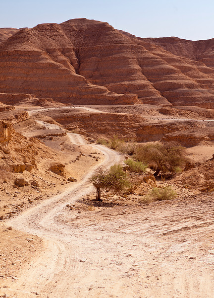 A winding road meanders through red sandstone hills and valleys in the Negev Desert in Isreal.