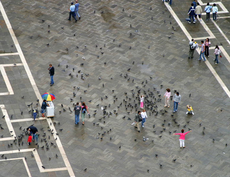 A view from the Campanile towards the Piazza San Marco. The tiled piazza is filled with people and pigeons.