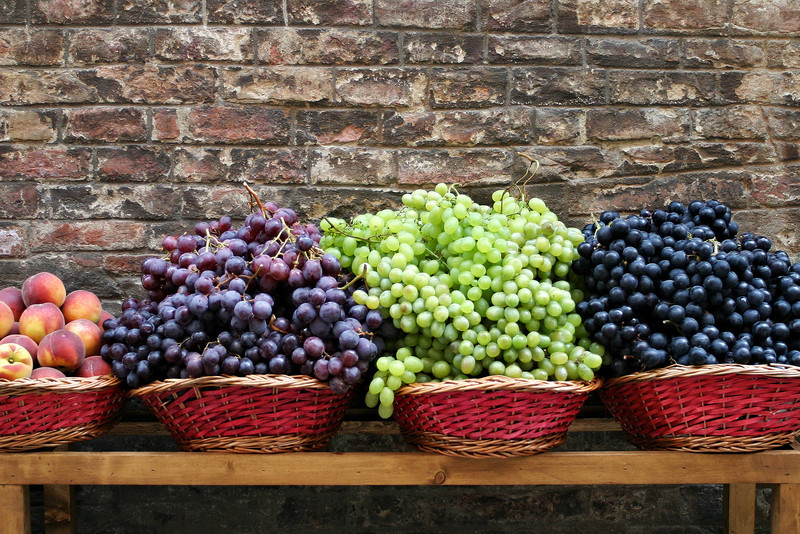 A display of various grapes at a small street market in Siena, Italy. In lieu of a window display, these grape clusters are simply laid out in baskets along the brick wall in front of the store for customers to view while passing by.