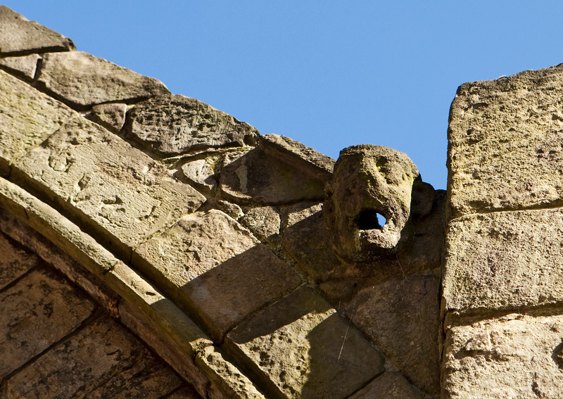 An old and weather-beaten gargoyle at the end of a flying buttress on the walls of Holyrood Abbey serves as a waterspout.