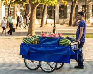 Hippodrome Vendor, Istanbul, Turkey, 2012