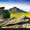 Europe - UK - England - Devon - Exmoor National Park - Valley of Rocks - Dry rocky valley that runs parallel to coast
