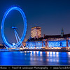 Europe - UK - England - London - River Thames in heart of City of Westminster & London Eye - Millennium Wheel at Dusk - Twilight - Blue Hour