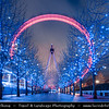 UK - England - London - London Eye - Millennium Wheel - Giant 135-metre (443 ft) tall Ferris wheel situated on the banks of the River Thames & Fairy lights in the trees during the build up to Christmas