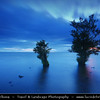 Europe - UK - Northern Ireland - Co. Antrim - Lough Neagh - Loch Neagh - Freshwater lake with trees at Dusk - Twilight - Blue Hour - Night