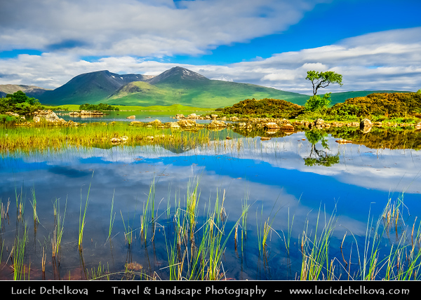 UK - Scotland - Scottish Highlands - Rannoch Moor - Mòinteach Raineach/Raithneach - Large expanse of around 50 square miles (130 km²) of boggy moorland to the west of Loch Rannoch, in Perth and Kinross and Lochaber, Highland, partly northern Argyll and Bute - Wonderful Late Morning Light