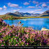 Europe - UK - United Kingdom - Scotland - Western Highlands - Rannoch Moor - Mòinteach Raineach/Raithneach - Large expanse of around 50 square miles (130 km²) of boggy moorland to the west of Loch Rannoch, in Perth and Kinross and Lochaber, Highland, partly northern Argyll and Bute