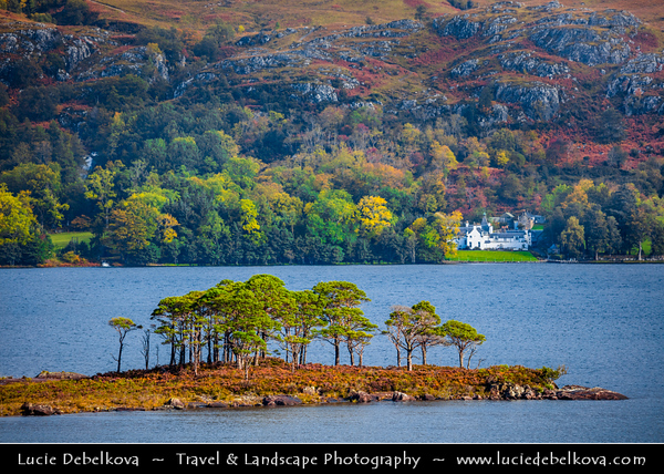 Europe - UK - United Kingdom - Scotland - Western Scottish Highlands - Western Ross - Loch Maree - Fourth largest freshwater loch in Scotland nestled within dramatic landscapes of Western Highlands, iconic for its ancient pinewoods