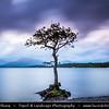 Europe - UK - United Kingdom - Scotland - Loch Lomond & Trossach