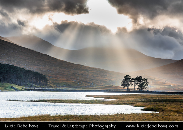 Europe - UK - United Kingdom - Scotland - Western Scottish Highlands - Loch Droma- Freshwater loch in Wester Ross - Dramatic changeable weather with Sun rays around island of trees