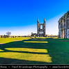 Europe - UK - United Kingdom - Scotland - St Andrews - Saunt Aundraes - Historical town & home of University of St Andrews, the third oldest university in the English-speaking world and the oldest in Scotland -  St Andrews Cathedral - Ruined Roman Catholic cathedral