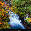 Europe - UK - United Kingdom - Scotland - Western Scottish Highlands - Western Ross - Landscape along Dundonnell River - Cascade waterfalls during autumn