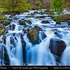 Europe - UK - United Kingdom - Wales - North Wales - Snowdonia National Park - Swallow Falls on Afon Llugwy river near Betws Y Coed