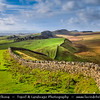 Europe - UK - United Kingdom - England - Northumberland - Hadrian's Wall - Vallum Aelium - Aelian Wall - Defensive fortification in Roman Britain - UNESCO World Heritage Site - Area directly linking to Housesteads Roman Fort