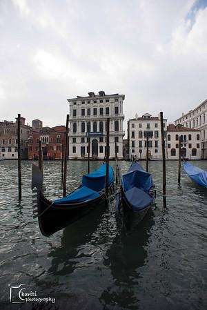 Venice 2013 (picked)
