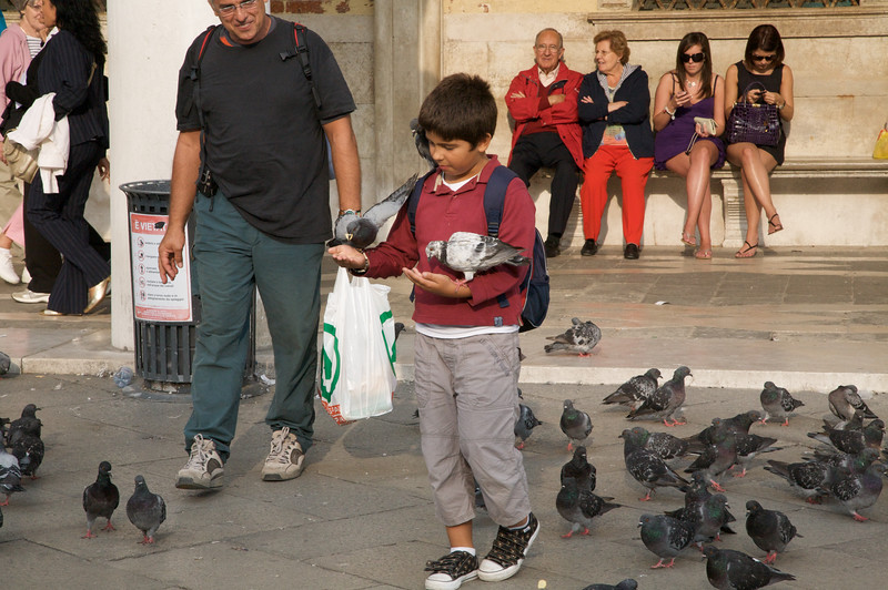 Feeding the thousands of pigeons in St Marcos Square