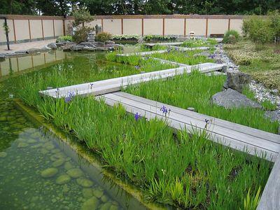 japanese_garden_03