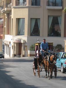 horse_carrige