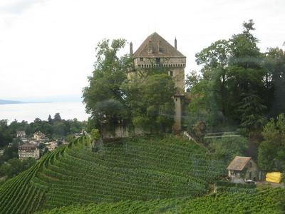 house_vineyards