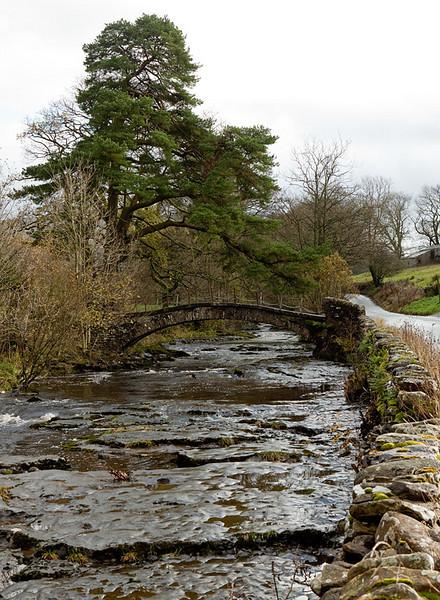 Bridge near Cowgill.