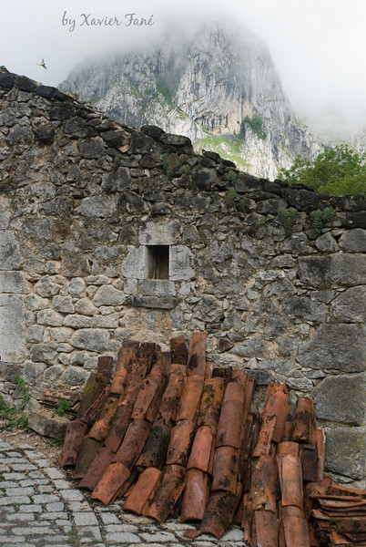 Scene in the remote town of Bulnes, Spain. Don't miss the bird in the upper left.
