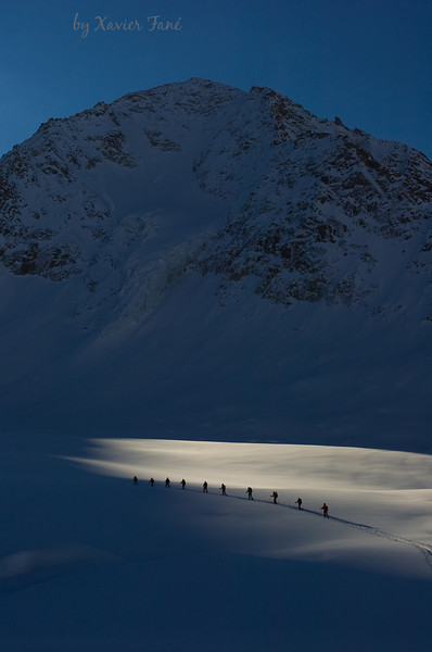 Skiers on the Finsteraarhorn Glacier, Swiss Alps.