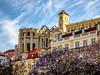 Scene from Lisbon_DSC00889 copy