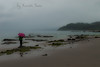 A rainy day in the Cantabrian Coast, northern Spain.