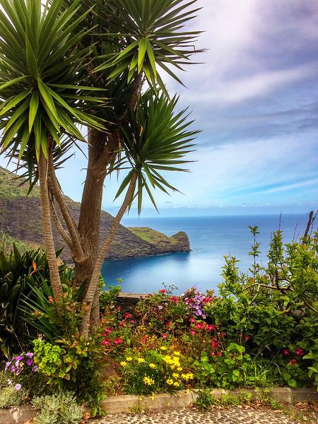 Island of Madeira Portugal_2213IP copy