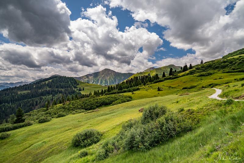 Green Mountains (Tyrol)