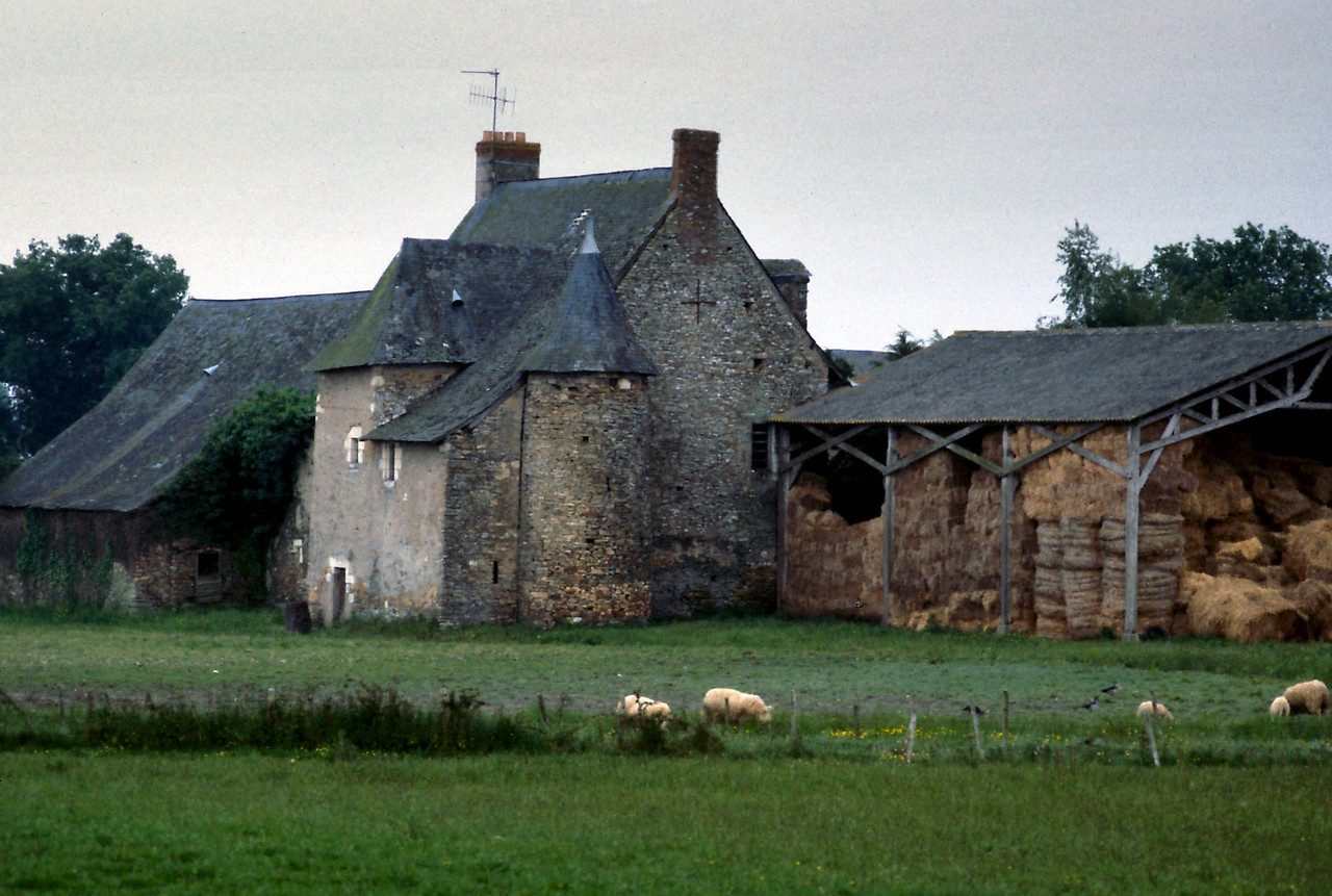 "Farm - Rt. D17<br /> <br /> Day 44 - May 24 - Azay-le-Rideau - 35 miles - Today's ride (D17) was very picturesque - sunny skies over half ruined old farmsteads with majestic barns. Picnicked by the river, while waiting for the chateau to reopen after the lunch hour.<br /> <br /> Azay-le-Rideau was nice enough, had a moat and some especially nice paintings of bare breasted women, but typical crowded tour.<br /> <br /> NEXT: Click the link below to see Brittany:<br /> <a href=""https://garywright.smugmug.com/Travel/European-Bicycle-Tour/Brittany/"">https://garywright.smugmug.com/Travel/European-Bicycle-Tour/Brittany/</a>"
