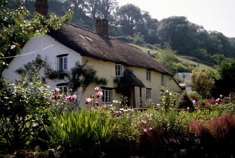 Cottage - Branscombe