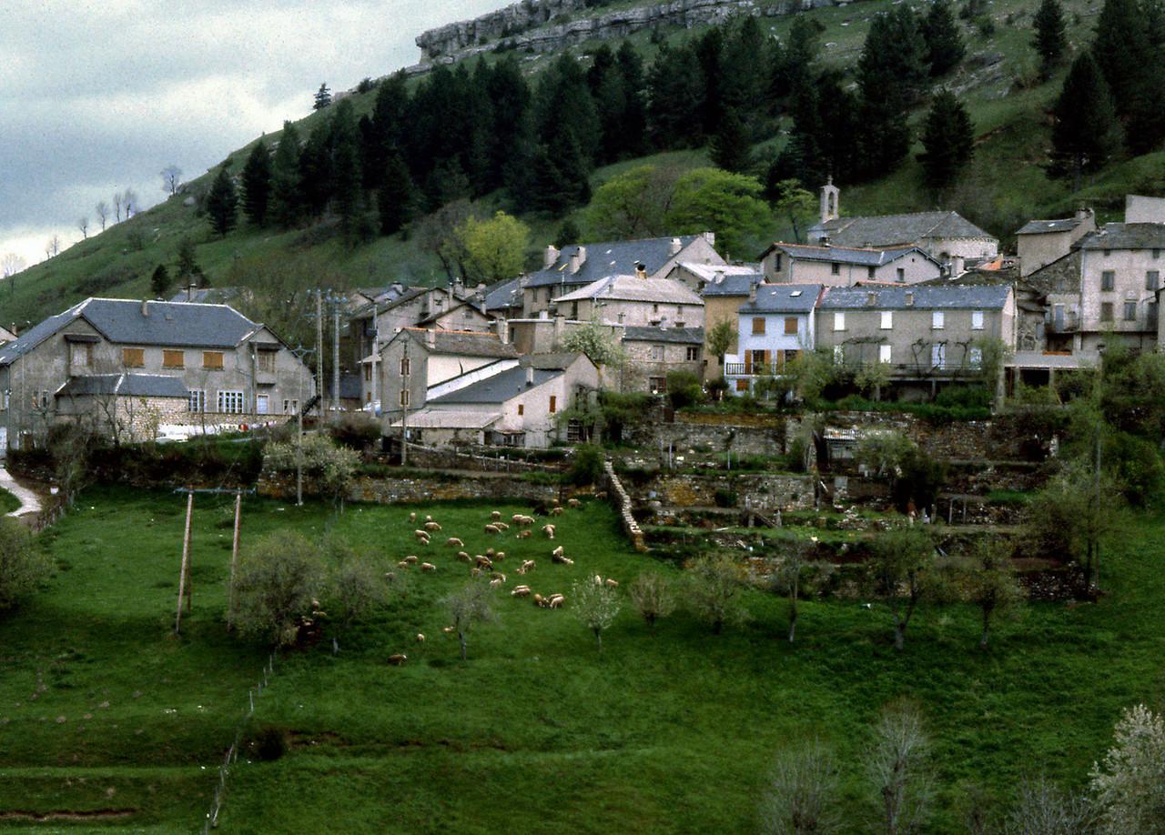 Tarn Village
