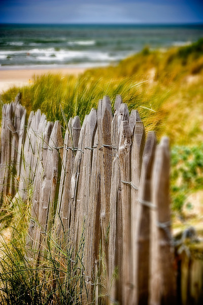 """North Sea Fence"" - The Netherlands"