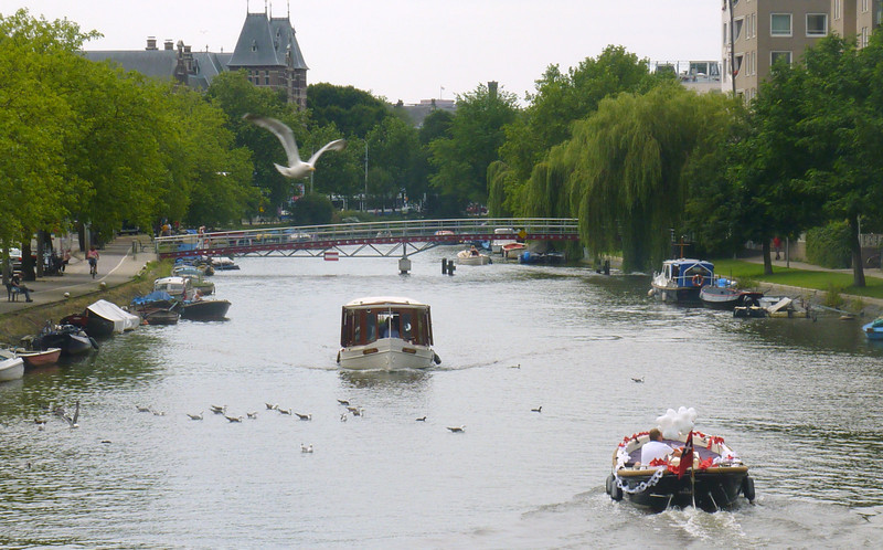 One of the four ring canals
