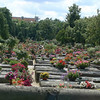 Cemetery with flowers on every grave.