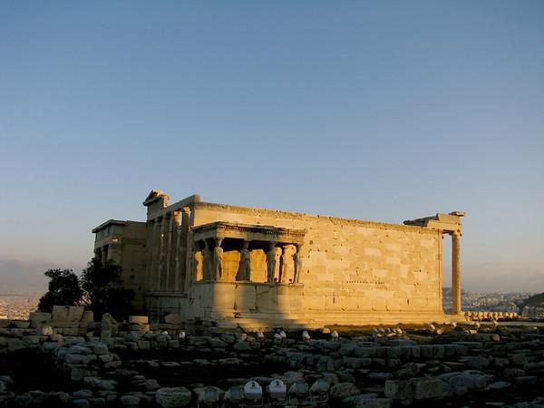 Erectium Athens, Greece January 2008
